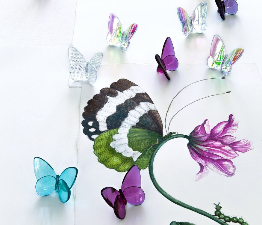 PAPILLON LUCKY BUTTERFLY, Peony
