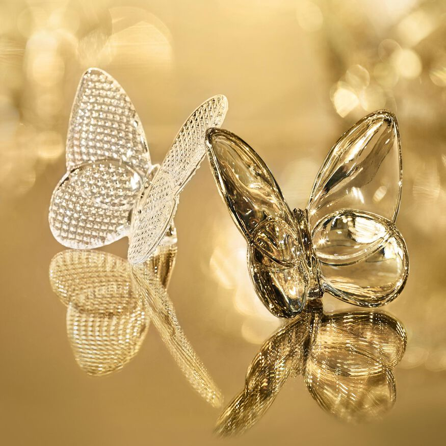 PAPILLON LUCKY BUTTERFLY  Clear Image - 3